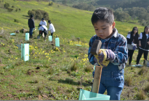 Planting For Our Future