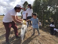Helping Get Rid of Rubbish on Australia Clean Up Day
